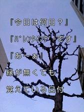 KC3Z005100010001 (3)-1