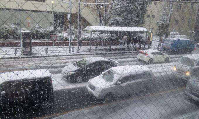 SNOW  1_20130114