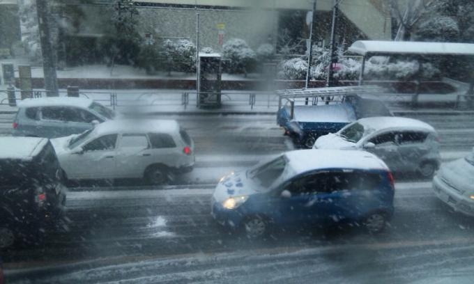 SNOW 2_20130114