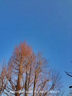 sky2013-1-8.jpg
