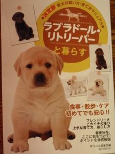 「ラブラドールリトリバーと暮らす」 掲載されました。 :エクステリア横浜(神奈川県・東京都の外構工事専門店) 愛犬と暮らすお庭空間のご相談もお受けしています。