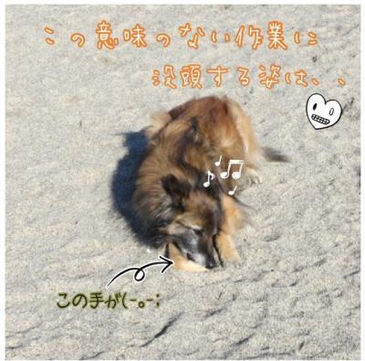 2度目の阿字ヶ浦5