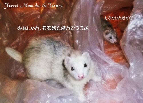 2012_0520-01.jpg