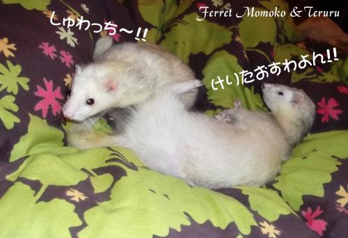2012_0520-02.jpg