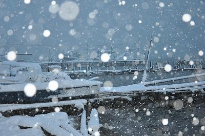 1雪の朝雪の朝1