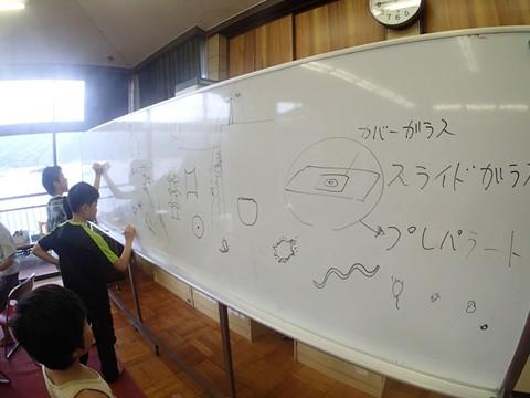 P8211713_mizo_r.jpg