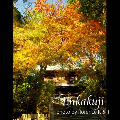 円覚寺141201_edited-1