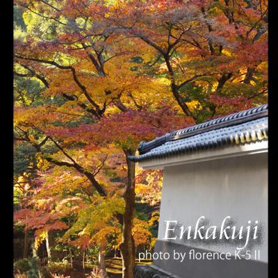 円覚寺141202_edited-1