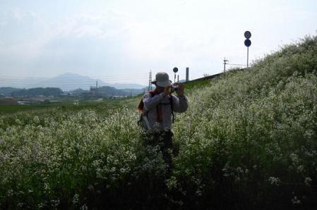 内野駅から小竹駅まで 287