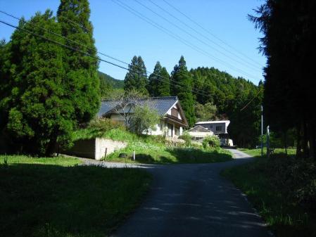 井原山 051