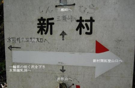 井原山 062