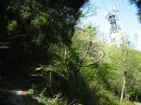 八幡岳 059