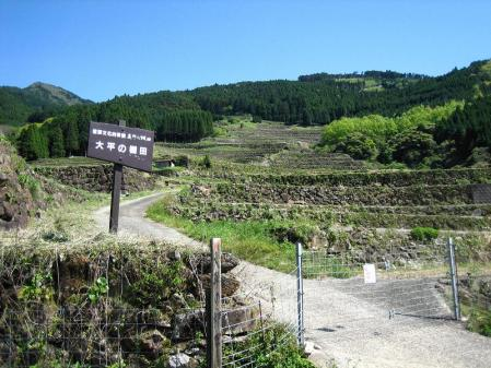 八幡岳 100
