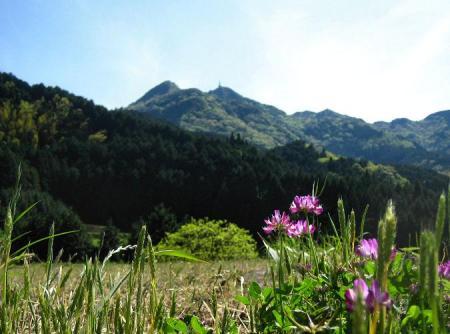 八幡岳 103