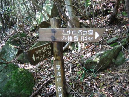 自然歩道 066