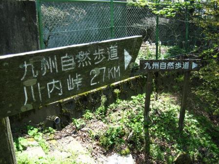 八幡岳 058