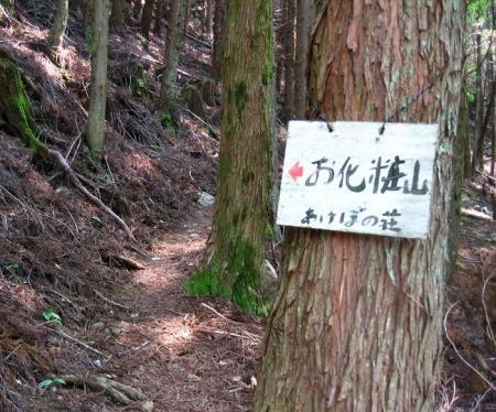 五葉岳 026