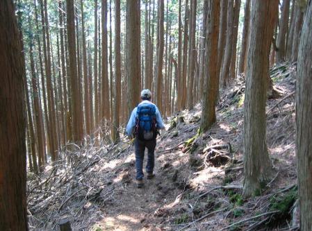 五葉岳 143