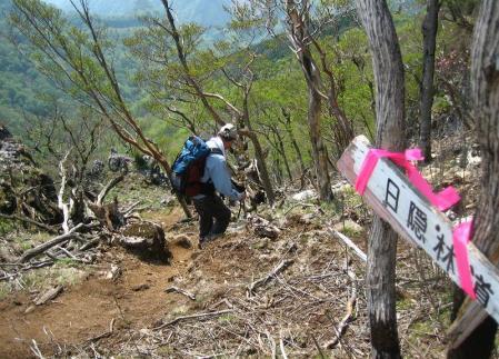 五葉岳 136