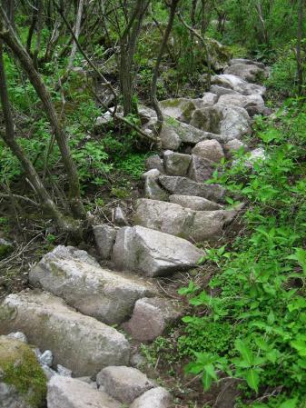 雲仙岳 117