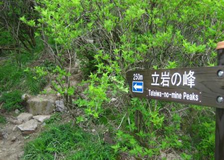 雲仙岳 116
