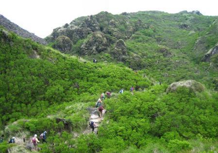 雲仙岳 138