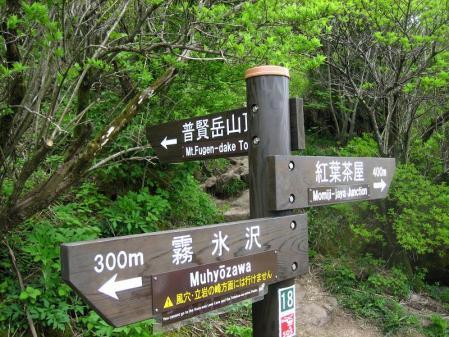 雲仙岳 201