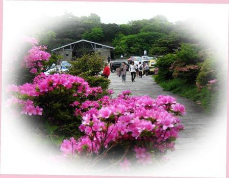 雲仙岳 232