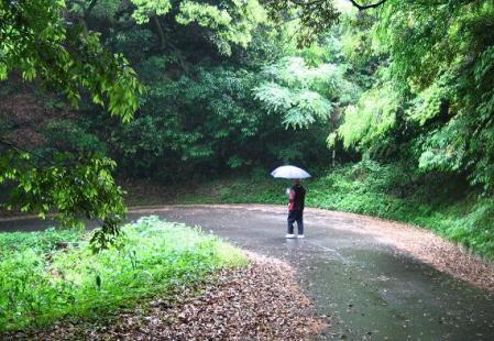 雨の清水山 009