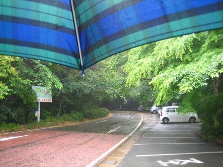 雨の清水山 001