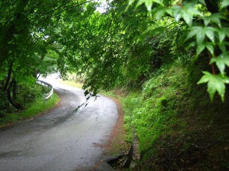 雨の清水山 017