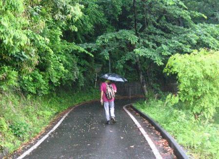 雨の清水山 061