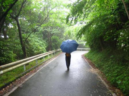 雨の清水山 056