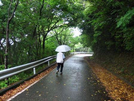 雨の清水山 050