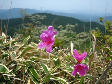 天山 天川登山口 019