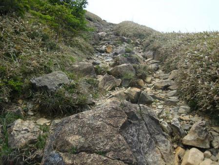 天山 天川登山口 040