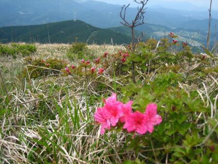 天山 天川登山口 059