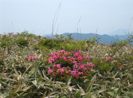天山 天川登山口 080