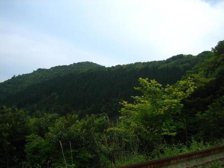 作礼山 004