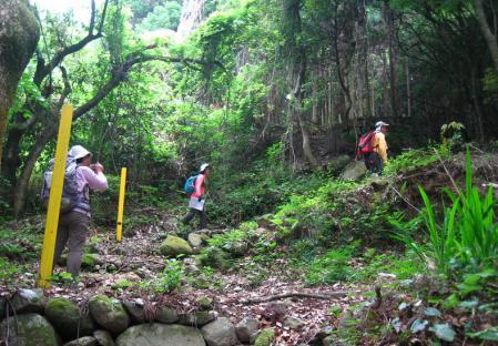 多良海道 2 090
