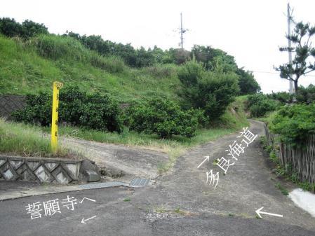 多良岳神社 104