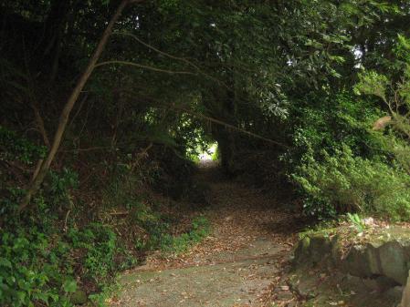 多良岳神社 123