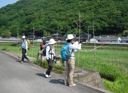 ぷくちゃん肥前山口 101