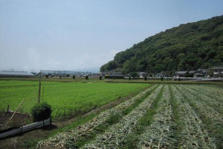 ぷくちゃん肥前山口 135