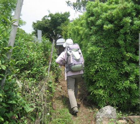 ぷくちゃん肥前山口 170