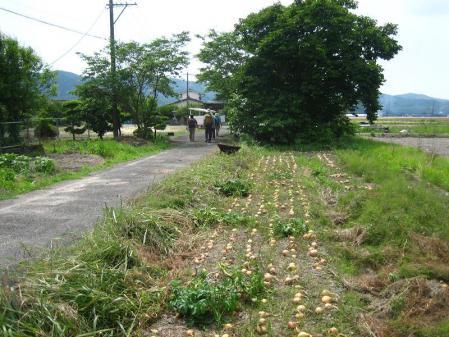 ぷくちゃん肥前山口 279