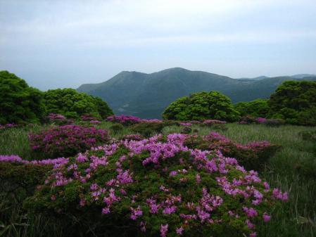 岩井ヶ岳 036