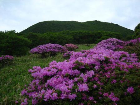岩井ヶ岳 048