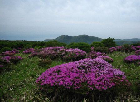 岩井ヶ岳 098