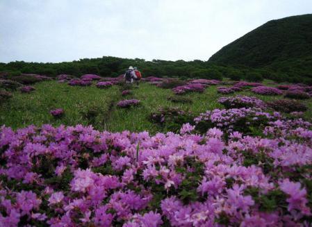 岩井ヶ岳 096